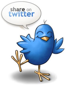 SEOLIX Twitter Services